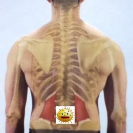 infekcie-sposobuju-bolest-chrbtice-i
