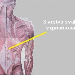 strecing-skratenych-svalov-chrbta