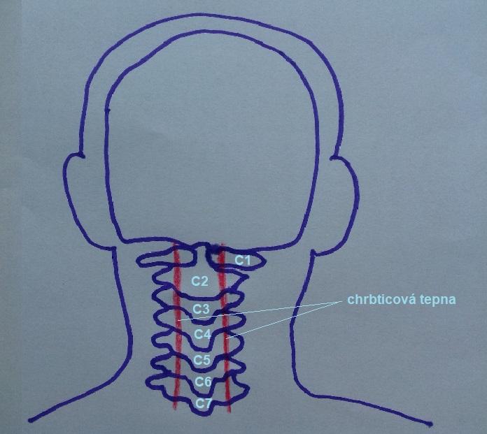 deformacia-krcnej-chrbtice