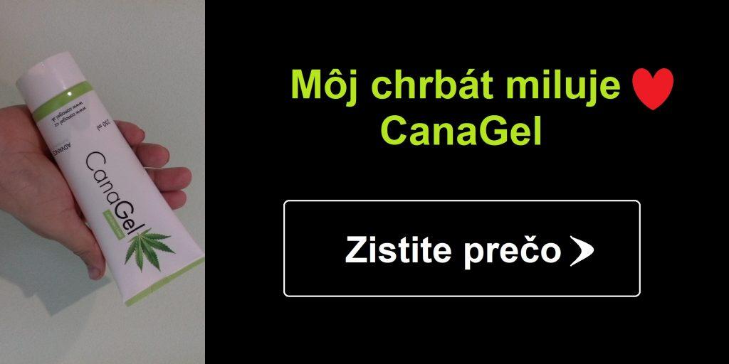 moj-chrbat-miluje-canagel