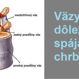 vazy-spajace-chrbtice