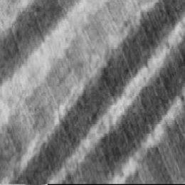 prirodzena-tvorba-kolagenu